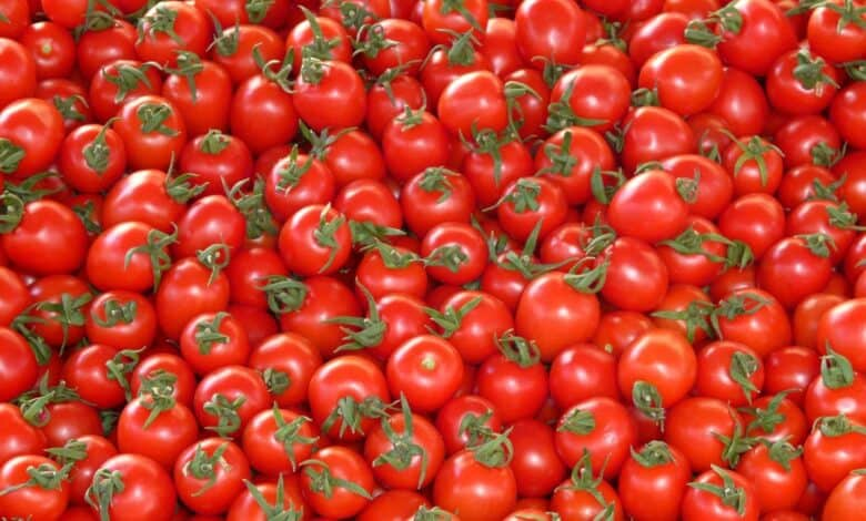 Tomato prices in Hyderabad