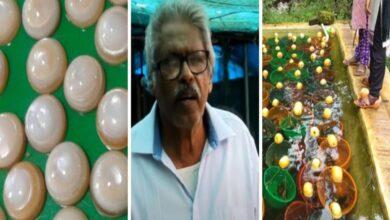 Photo of Kerala farmer grew pearls in buckets