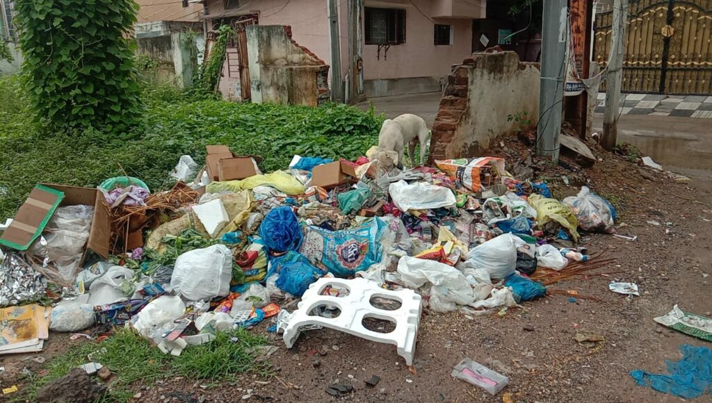 Nadeem Colony facing infrastructural and hygienic problems