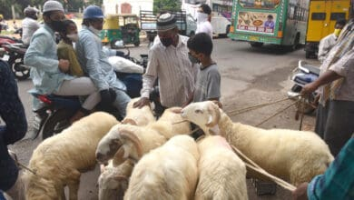 Photo of B'luru bans animal sacrifice in public places on Bakrid