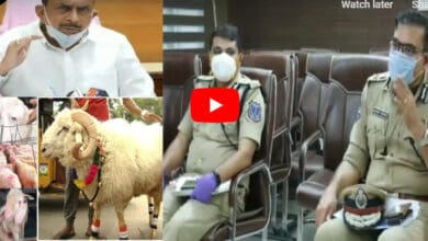Photo of HM asks police personnel not to interfere in transportation of Qurbani animals