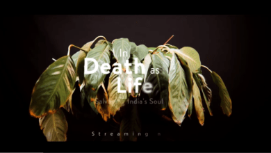 Photo of In Death as in Life Final