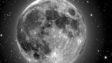 Photo of New estimations show moon has hazardous radiation levels