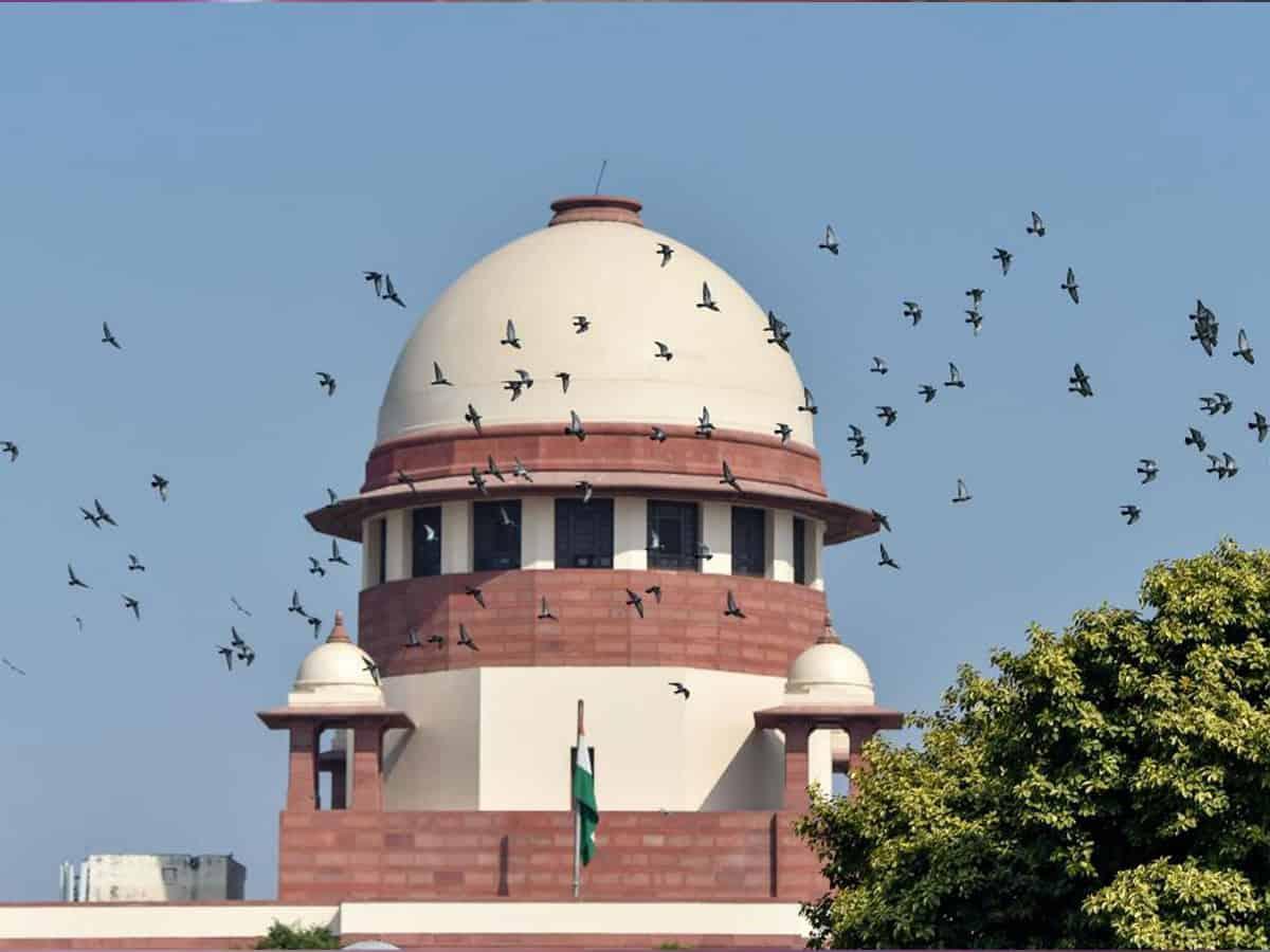 Court verdict will decide Pilot's fate in Rajasthan politics