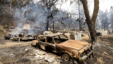 Photo of In just a week, wildfires burn 1 million acres in California