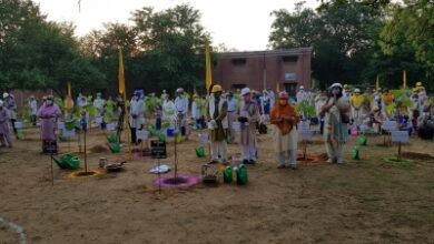 Photo of Agra NGO plants saplings in 75 cities across four continents