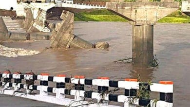 Photo of Bridge washed away before inauguration in Madhya Pradesh