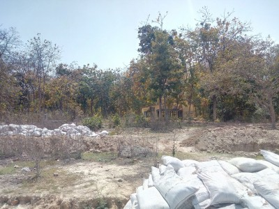 Dead body with a 'Tattoo' found in Tughlaqabad jungle
