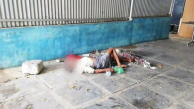 Photo of Dogs spotted chewing dead body of a COVID patient at a hospital