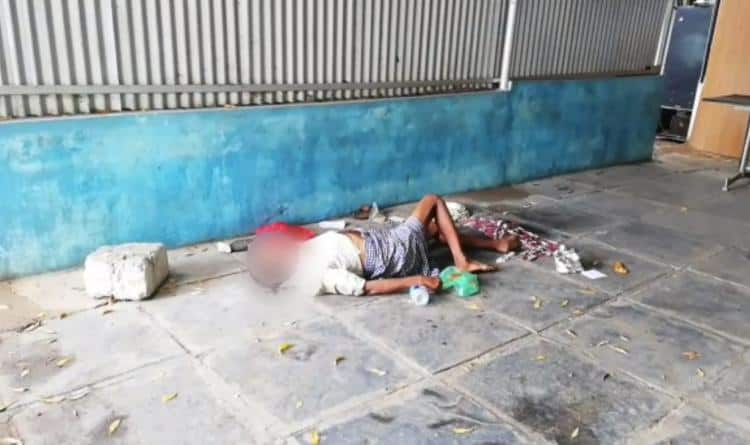 dogs chewing dead body of covid patient