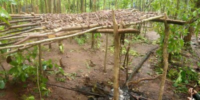 Four Maoist camps busted in Odisha