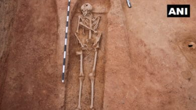 Photo of Human skeletal remains unearthed at TN's Kondagai excavation site