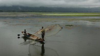 Photo of Rains grace Srinagar after a dry spell