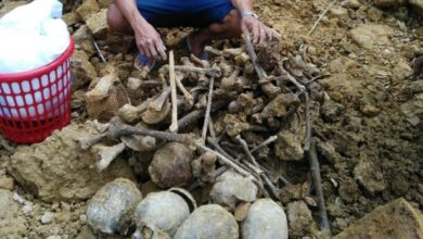 Photo of Human skulls, bones unearthed after landslide in Mizoram