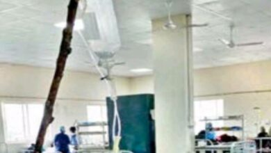 Photo of Osmania Hospital: Shock as tree branches used as saline stands