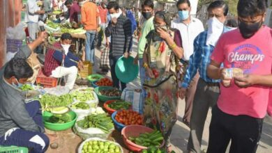 Photo of Vegetable prices go up after incessant rains in the state