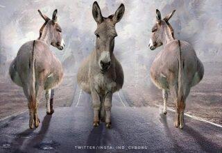 Photo of Poster parodying 'Sadak 2' goes viral