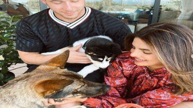 Photo of Priyanka Chopra welcomes new furry friend