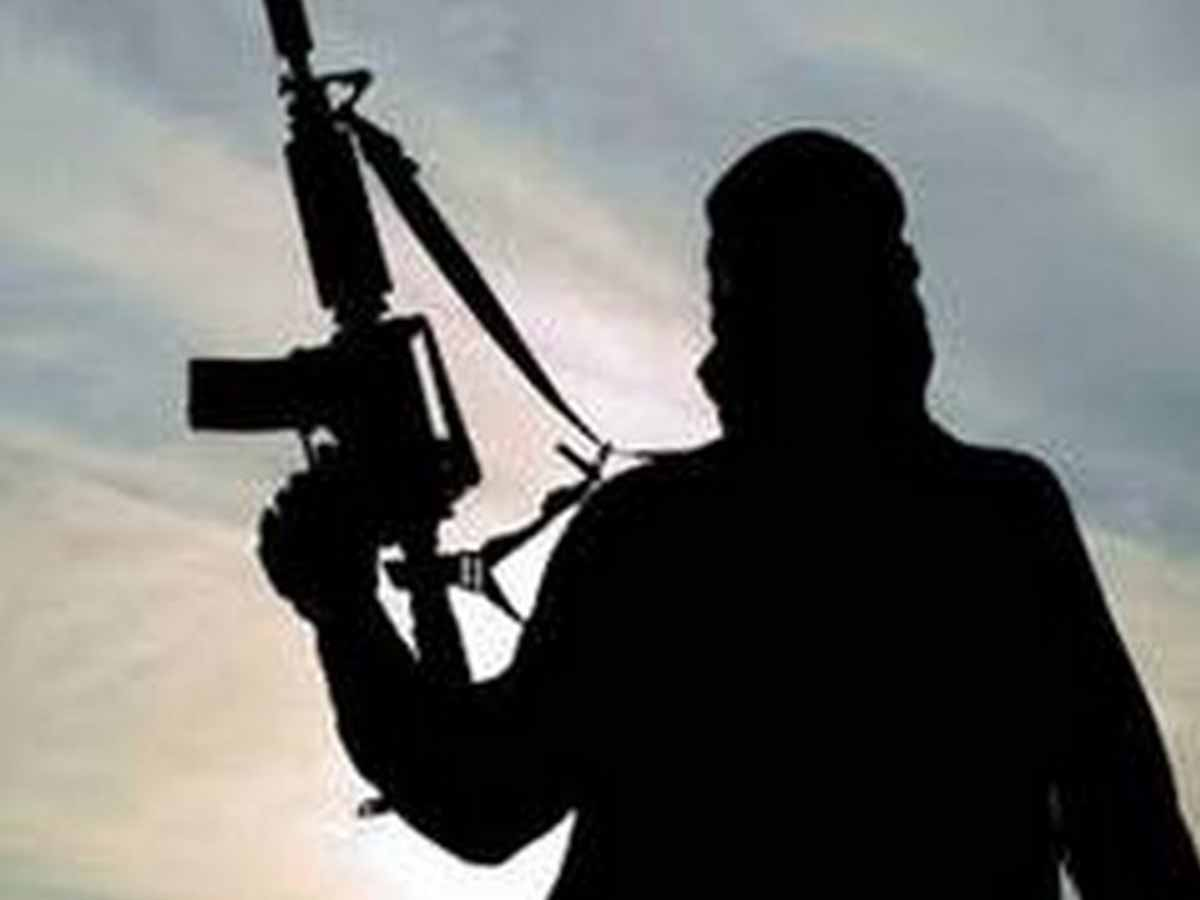 2 unidentified terrorists killed in Shopian encounter: Police
