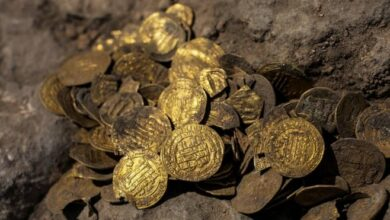 Photo of 425 gold coins dating back to early Islamic period found