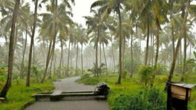 Photo of As rains pound Kerala, water panel rules out 2018, 2019 repeat