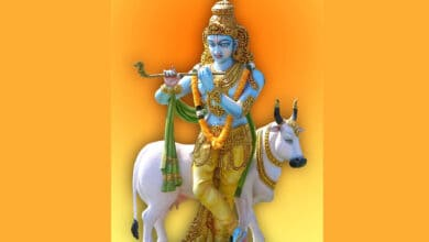 Photo of Lord Krishna to celebrate his 1st virtual B'day