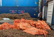 Photo of Drugs worth Rs 1,000 crores seized at port of Navi Mumbai