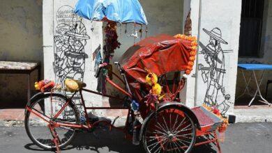 Photo of 14-yr-old girl pulls rickshaw for survival during lockdown