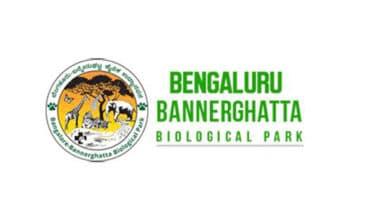 Photo of Bengaluru Zoo to gift lions to safari