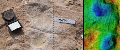 Photo of 120,000-year-old human footprints found in Saudi Arabia