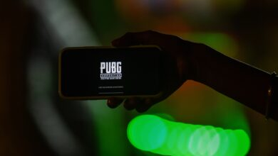 Photo of PUBG Mobile, Lite version taken down from Google, Apple app stores