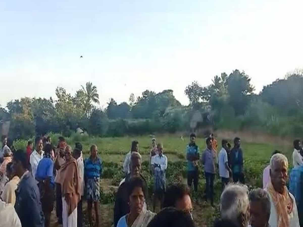 17-year-old killed in elephant attack in Andhra's Chittoor
