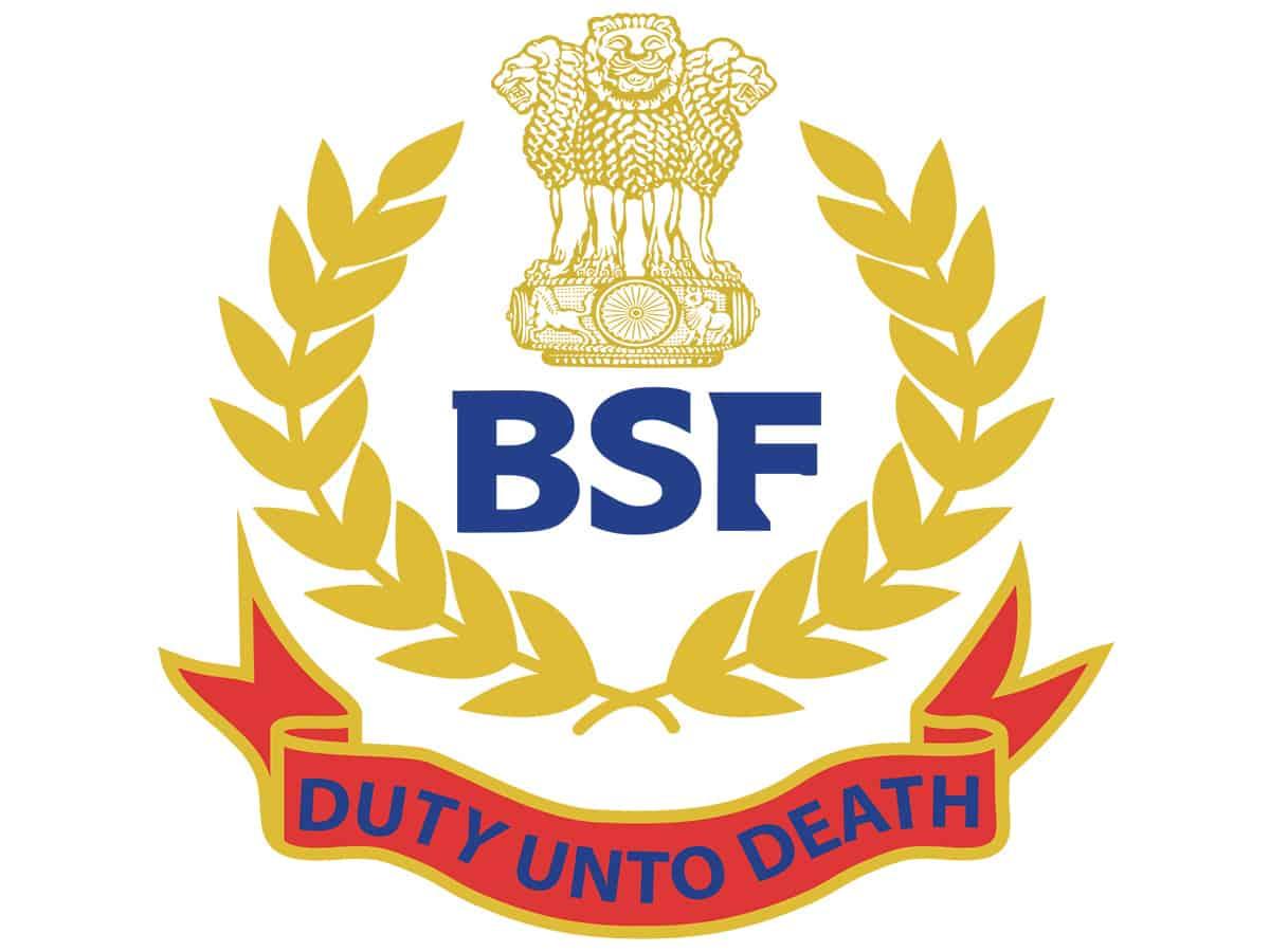 BSF seize 13 kg heroin in Punjab's Ferozepur