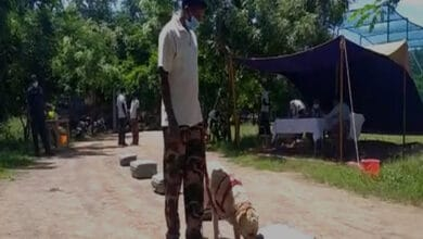 Photo of Andhra Pradesh intelligence department conducts police dog test