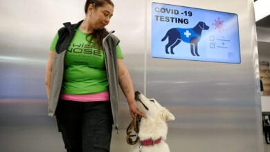 Photo of Finland's Helsinki Airport deploys sniffer dogs to detect COVID-19