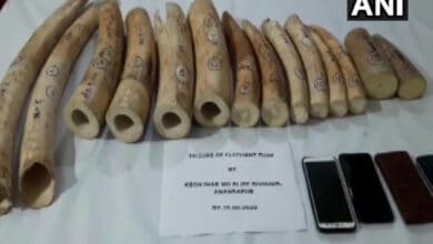 Three held with 19 kg elephant tusks in Odisha's Keonjhar