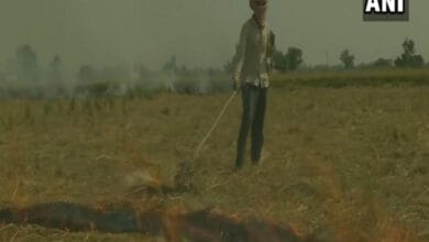 Photo of Amritsar farmers continue to burn stubble as alternative methods