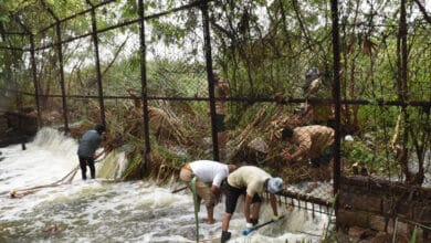 Photo of Rain floods Hyderabad zoo; officials struggle with choked ponds