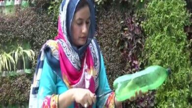 Photo of Environmentalist in Jammu creates vertical gardens using plastic bottles