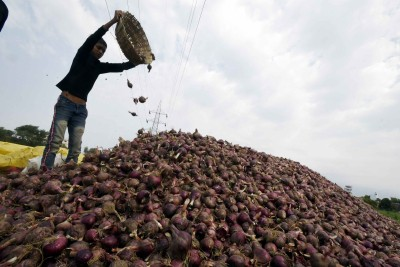 K'taka farmers seek exemption from export ban on 'Bangalore Rose' onions