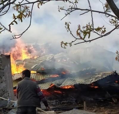 Pakistan resorts to intense shelling along LoC in Rajouri