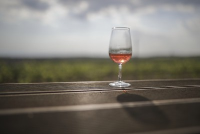 Tanzania plans to boost production of wines