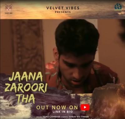 Tejas Gambhir's new song 'Jaana Zaroori tha' raises mental health awareness