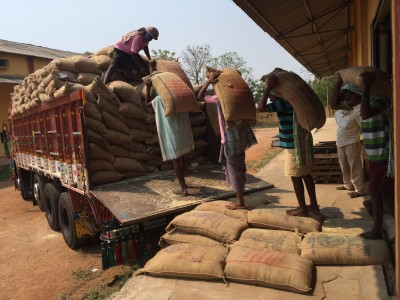 32,12,439 MT paddy purchased from over 2.83L farmers till Oct 9