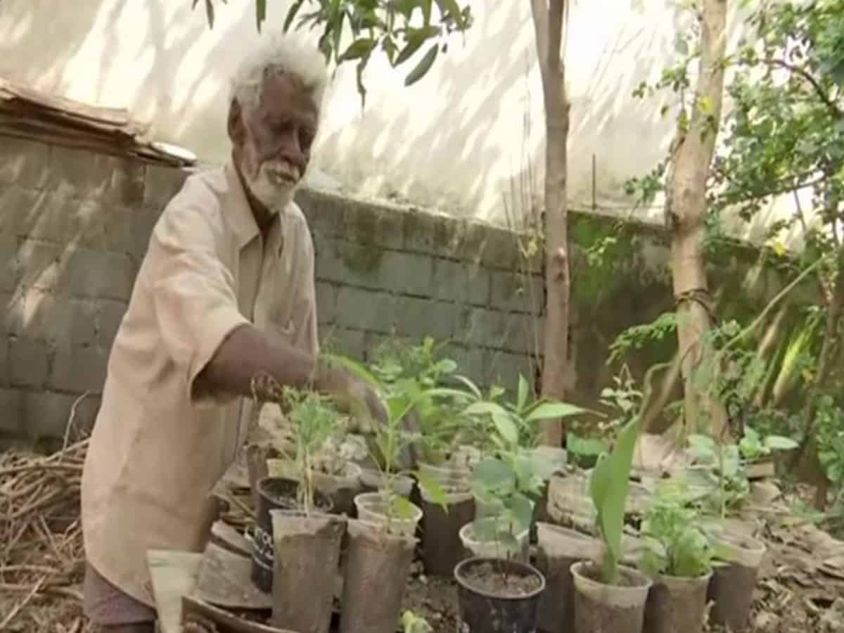 79-yr-old roadside sapling seller's sales double after viral photo