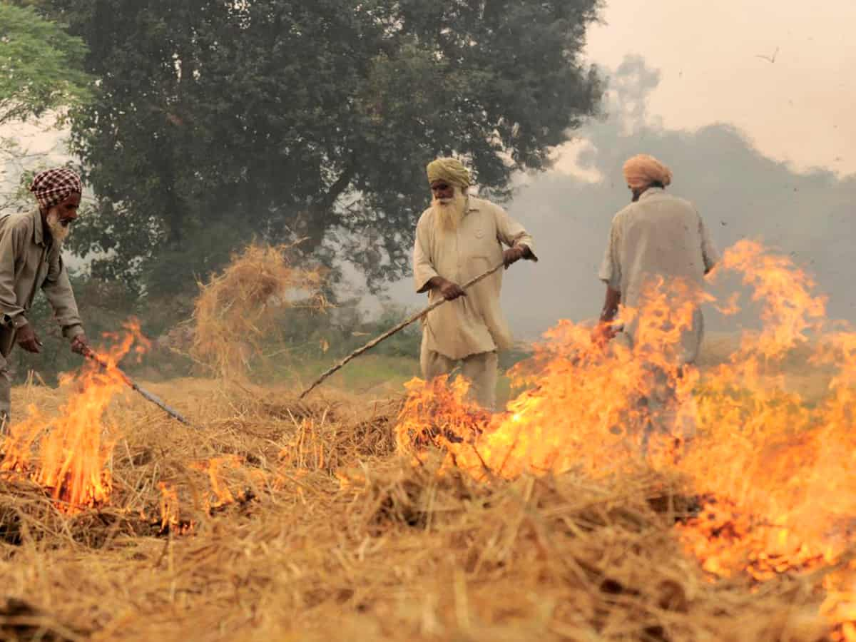 Delhi's air quality to turn 'poor' as stubble burning increases