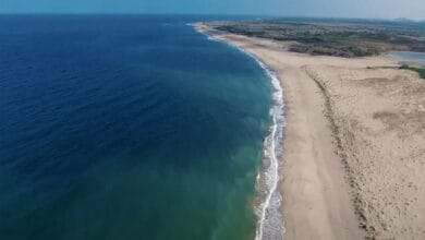 Photo of Proud moment as 8 Indian beaches awarded 'Blue Flag': Javadekar