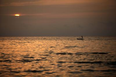 Climate change responsible for record sea temperature levels: Study