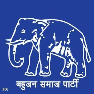 Despite revolt, BSP candidate's papers declared valid