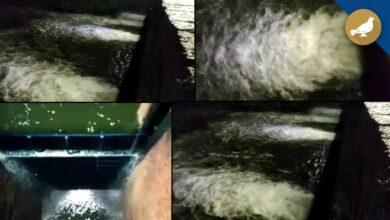 Photo of Hyderabad Heavy Rain: Himayat sagar gates opened in late night